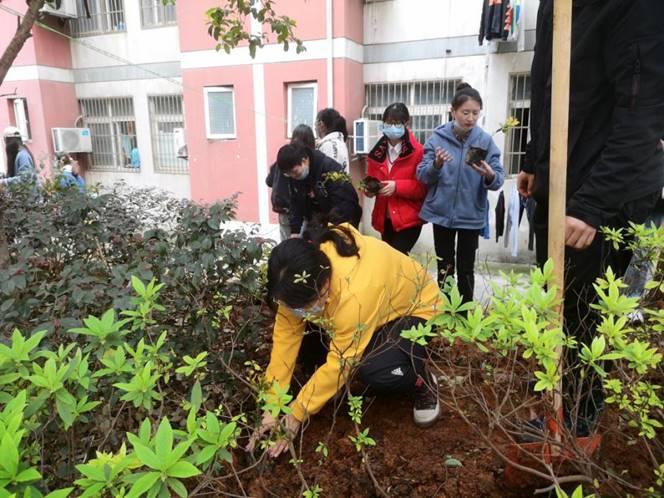 【院系党建】践行绿色发展理念 党员植树在行动